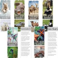 Fun Facts Animal Bookmark PD137-6296