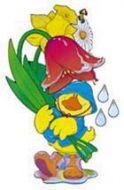 Spring Duck Bulletin Decorative Set